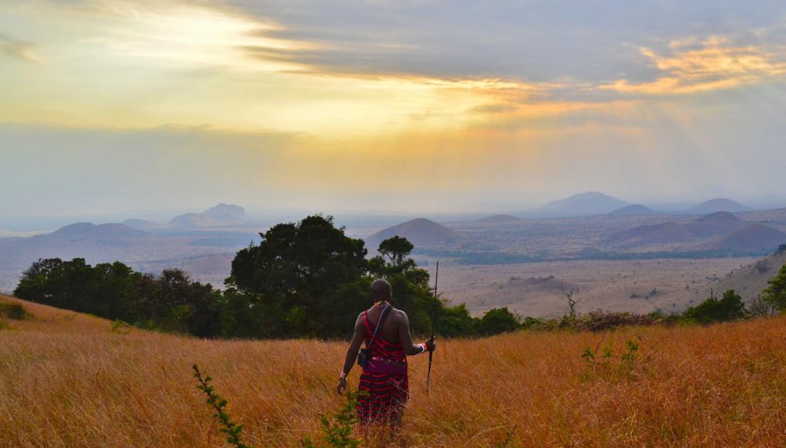 Sawanny w Kenii